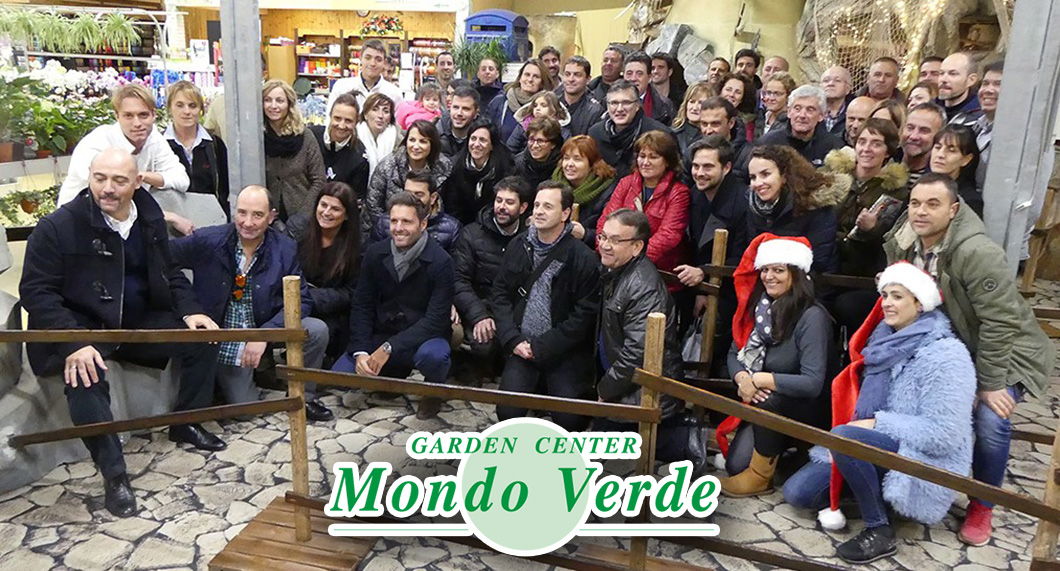 13 mondoverde grupo